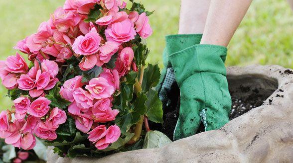 5 Types of Gardening Gloves