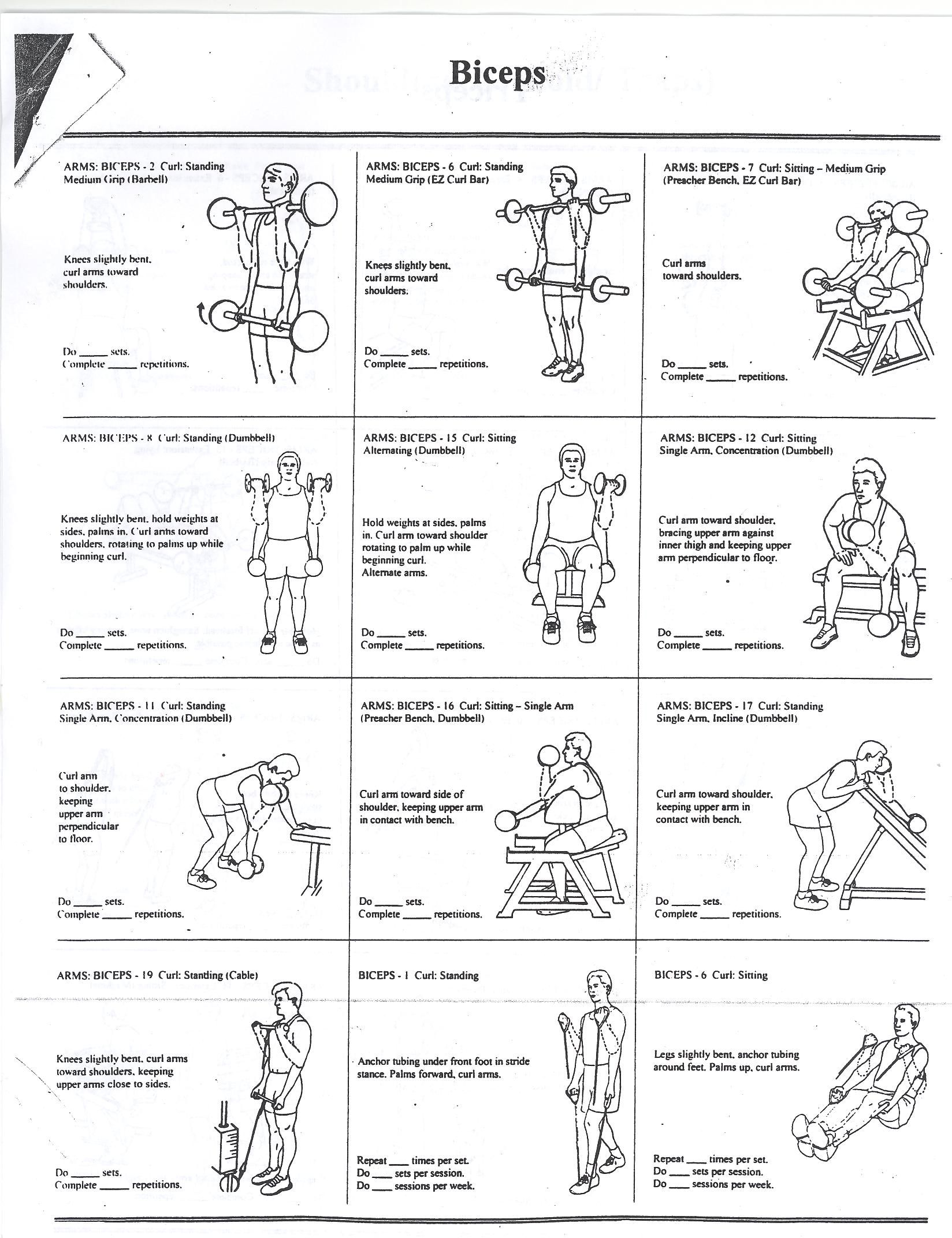 Bicep workouts health and fitness training also excercises rh pinterest