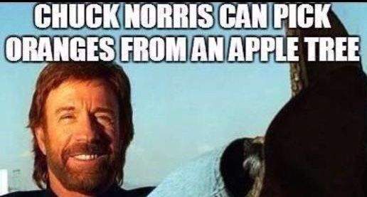 Pin by Blue Cheese on CHUCK NORRIS MEMES WITHOUT BOTTOM ...