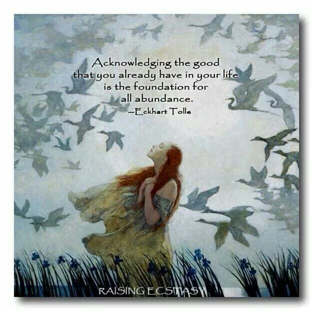 """Acknowledging the good that you already have in your life is the foundation for all abundance."" ~Eckhart Tolle"