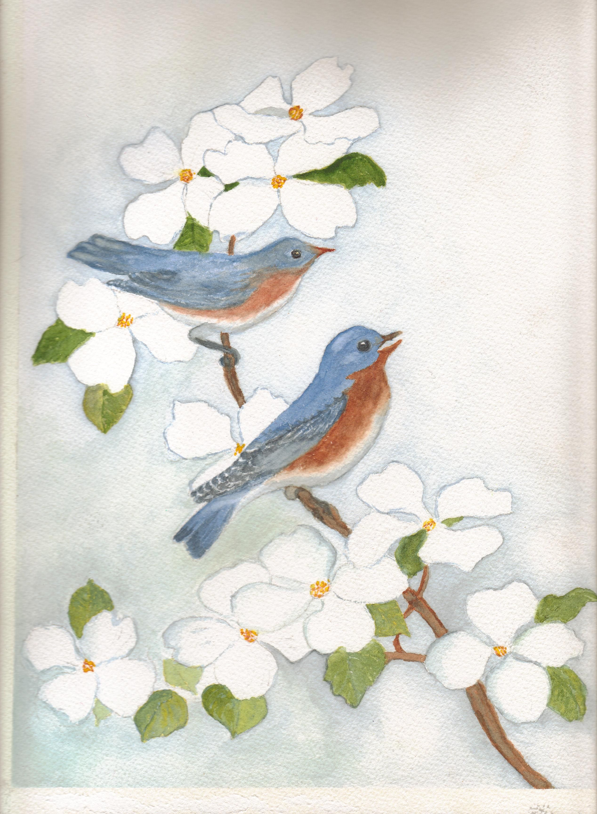 The Birds Water Color