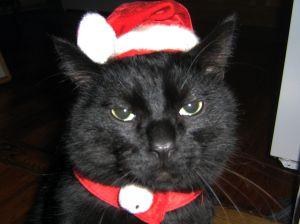 Merry Christmas. I hate you.