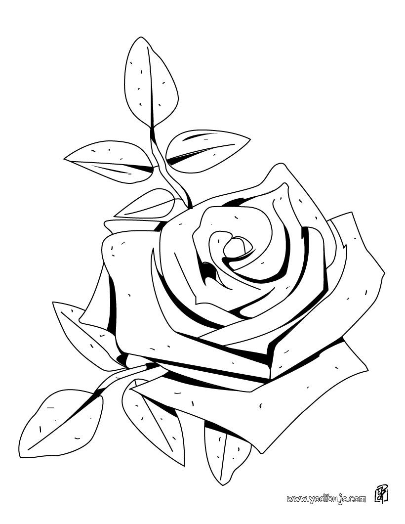 Dibujos Para Colorear E Imprimir | dibujos rosas para colorear e ...