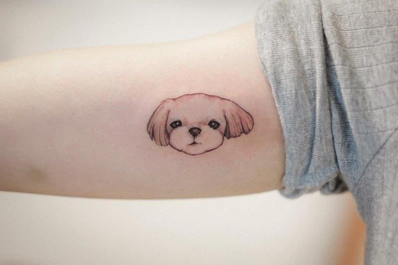 Maltese Dog Tattoo Tattoos Mother Daughter Tattoos