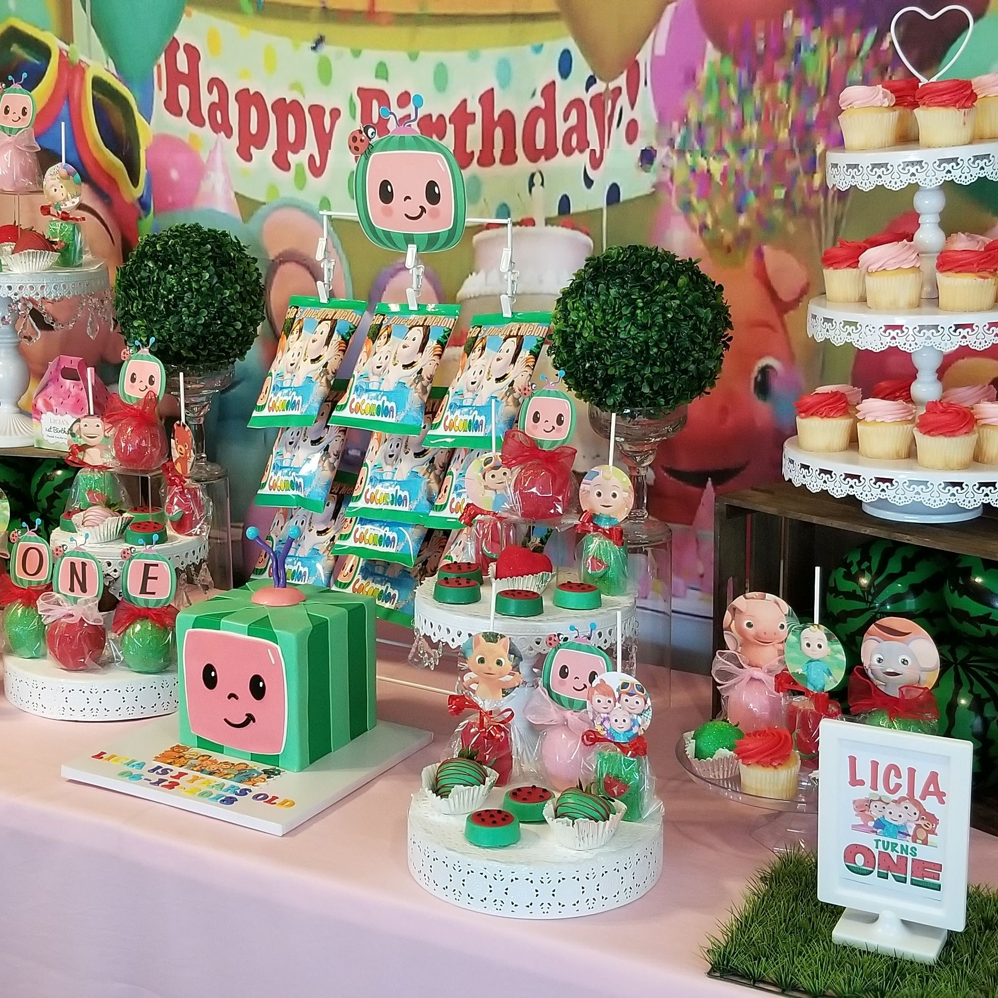 Cocomelon Dessert Table Decorations Kids Themed Birthday Parties 2nd Birthday Party For Girl Baby Birthday Party Theme