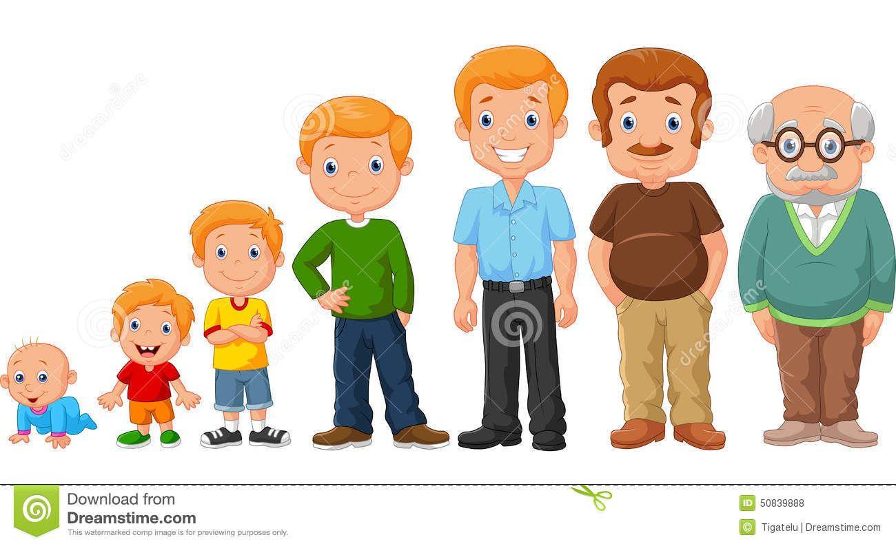 Cartoon Development Stages Man Illustration 50839888 Jpg 1300 793 Family Cartoon Body Preschool Preschool Family
