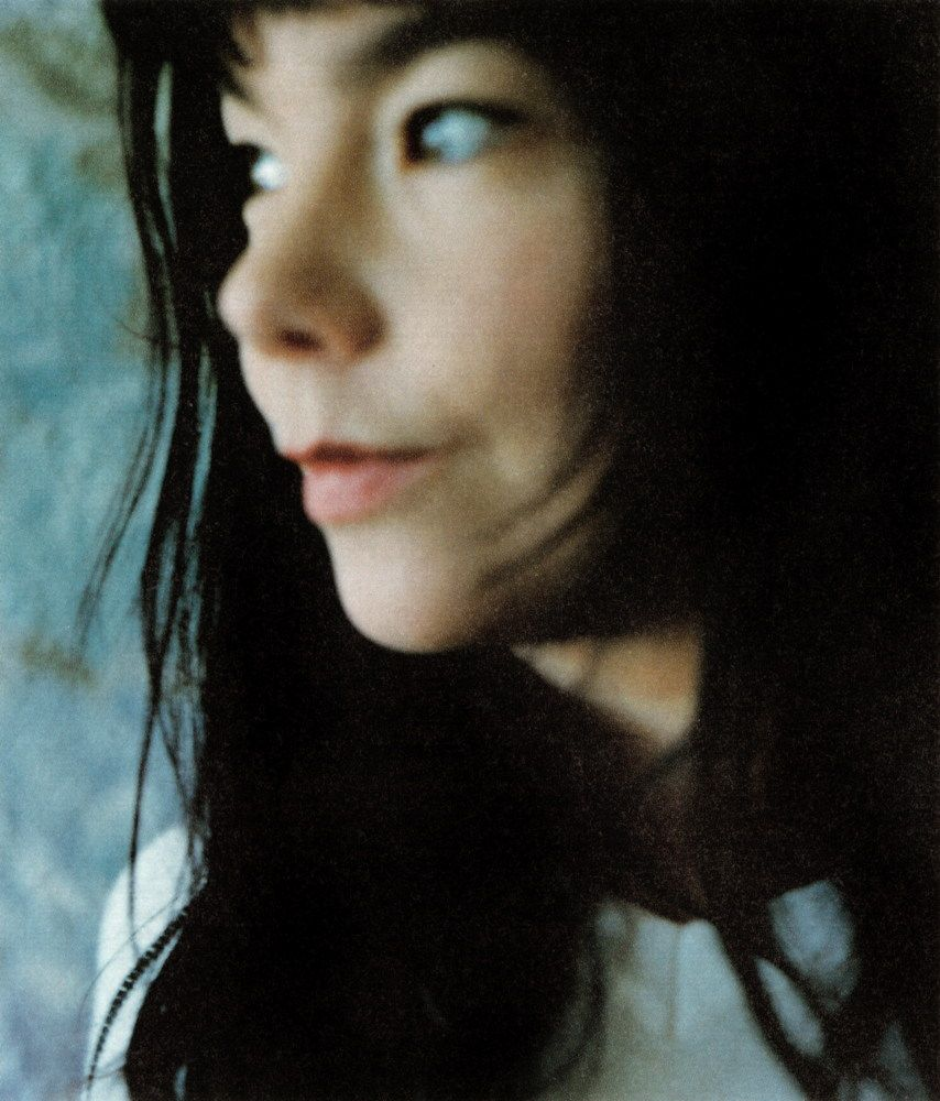 Björk by Takashi Homma