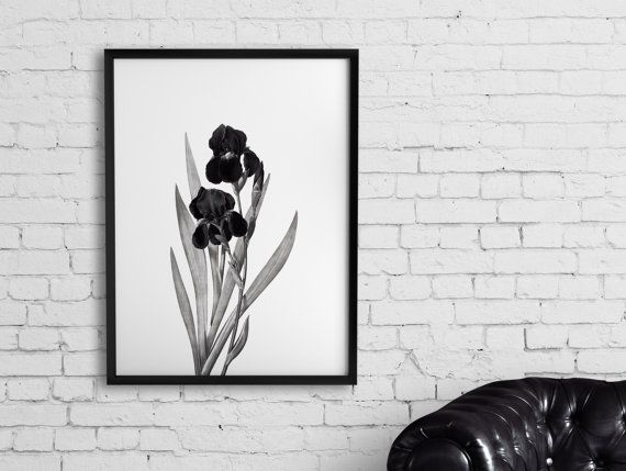 PRINTABLE WALL ART Iris Encyclopedia Poster flower by hancostudio