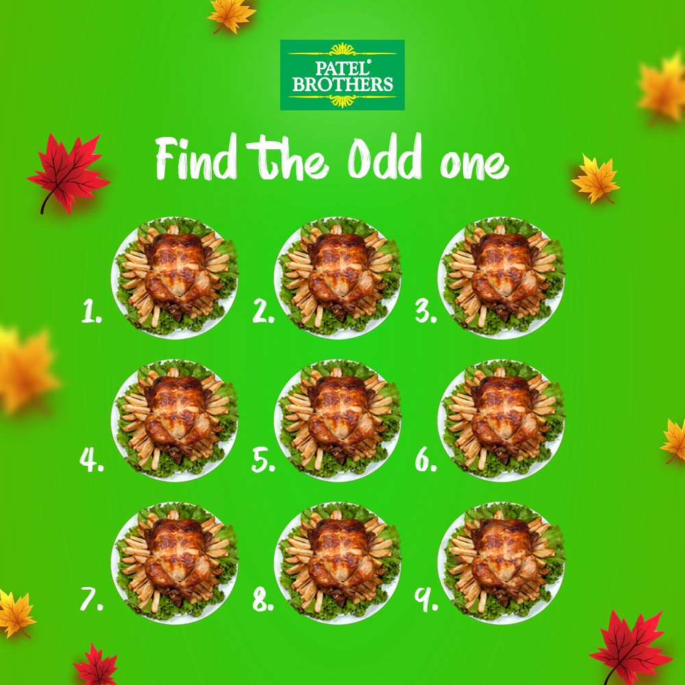 Find the odd one indian food recipes cooking turkey