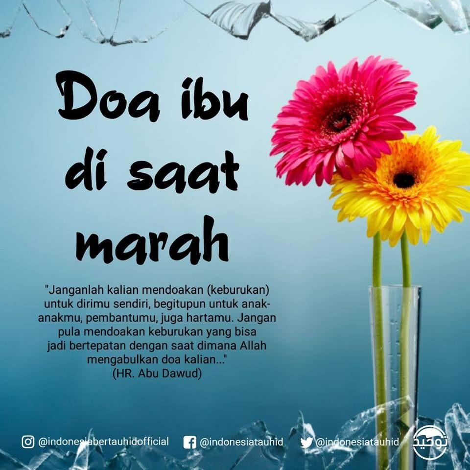 Doa Ibu Disaat Marah Janganlah Kalian Mendoakan Keburukan Untuk