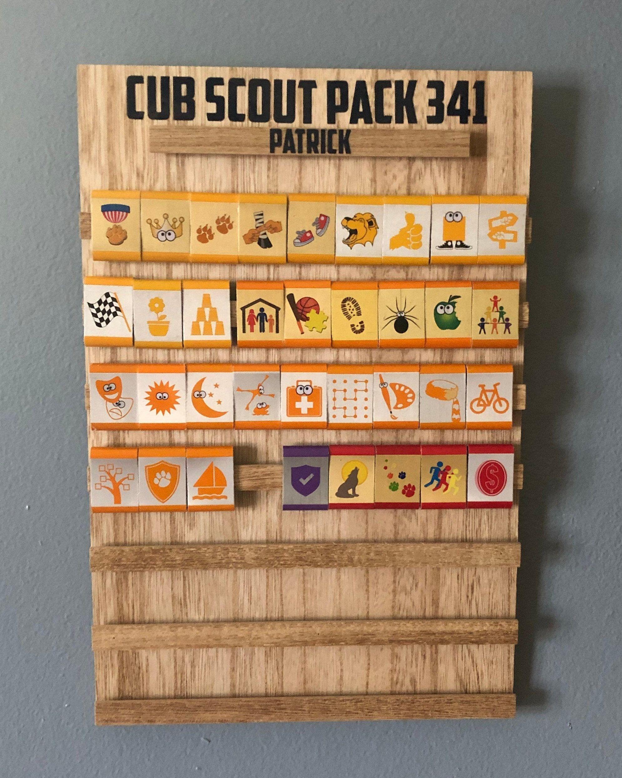 Pin On Bsa Cub Scouts