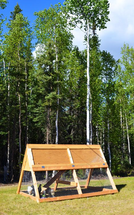 Mobile chicken coop homesteading pinterest mobile for Portable coop