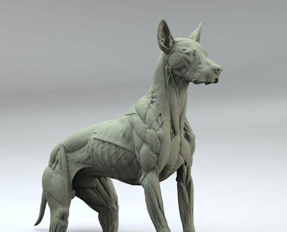 Pin von Kyle Pavlock auf Sculpture Reference and Tutorials ...