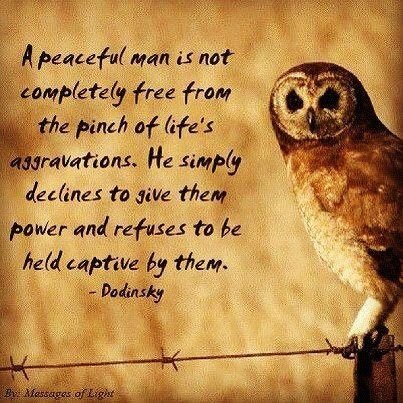 A peaceful man is not completely free from from the pinch of life's aggravations. he simply declines to give them power and refuses to be held captive by them ..