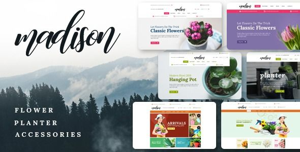 Pin On Shopify Themes