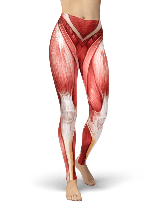 Human Anatomy Leggings Zen Stylez Anatomy Pinterest Human