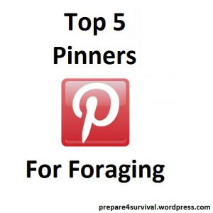 Top 5 Pinterest Pinners For Foraging | prepare4survival