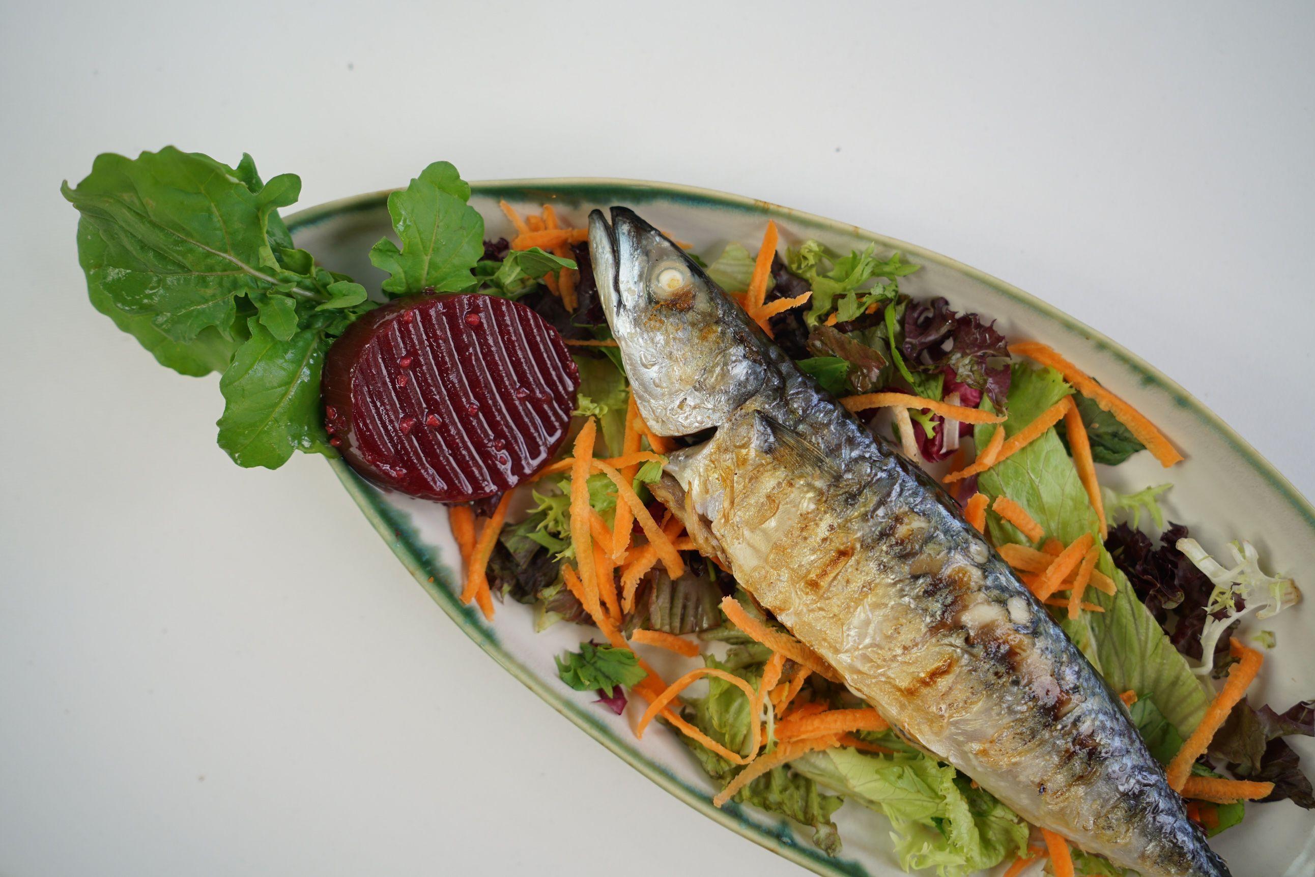 Malzemeler 1 adet uskumru balığı 4 yemek kaşığı zeytinyağı 2 adet defne  yaprağı 3-4 adet tane karab… | Gıda, Balık tarifleri, Food blogs