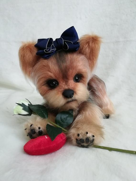 Yorkshire Terrier Realistic Toy Dog Puppy Pet Animals Doll