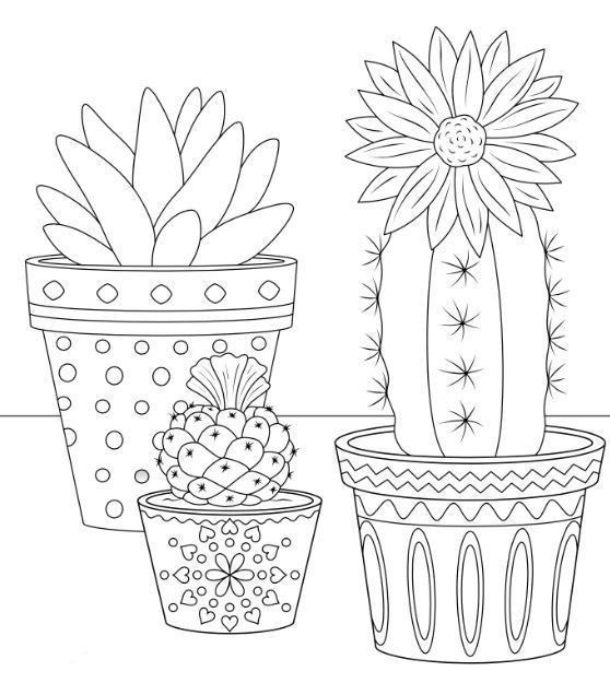 Cactus Coloring Page For Kids Free Print Pattern Coloring Pages Cactus Embroidery Coloring Pages