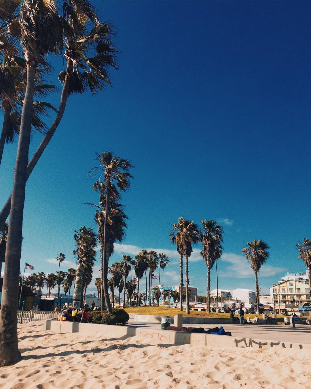 Jannikaschmidt On Instagram Throwback To My Most Favourite City Losangeles Throwback Veni In 2020 Favorite City Venice Beach Boardwalk Los Angeles Wallpaper