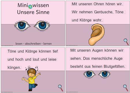 miniwissen unsere sinne zaubereinmaleins designblog schule f nf sinne kindergarten. Black Bedroom Furniture Sets. Home Design Ideas