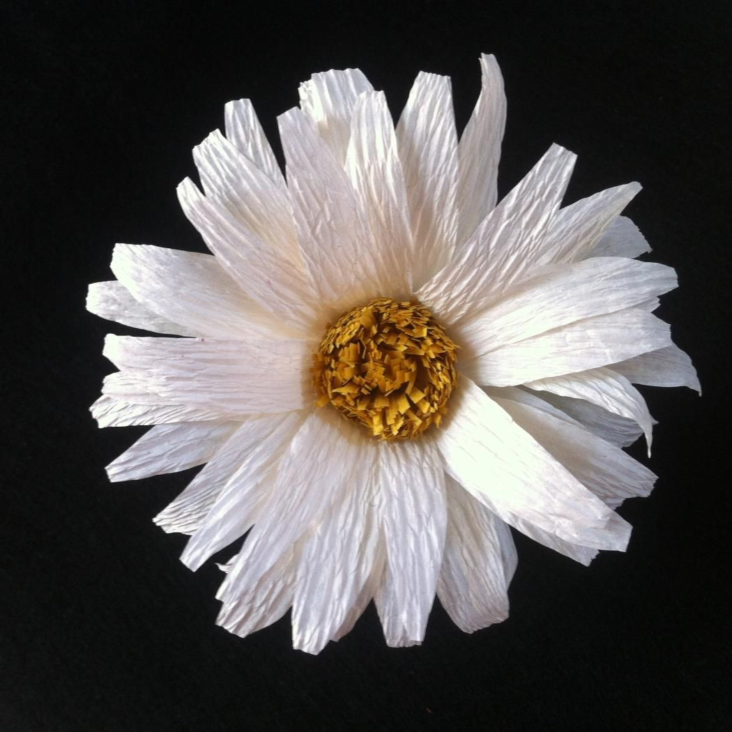 Diy crepe paper daisy flower crepe paper streamers paper flower make this beautiful daisy izmirmasajfo Choice Image