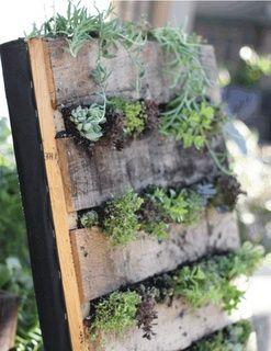jardin vertical con palets reciclados