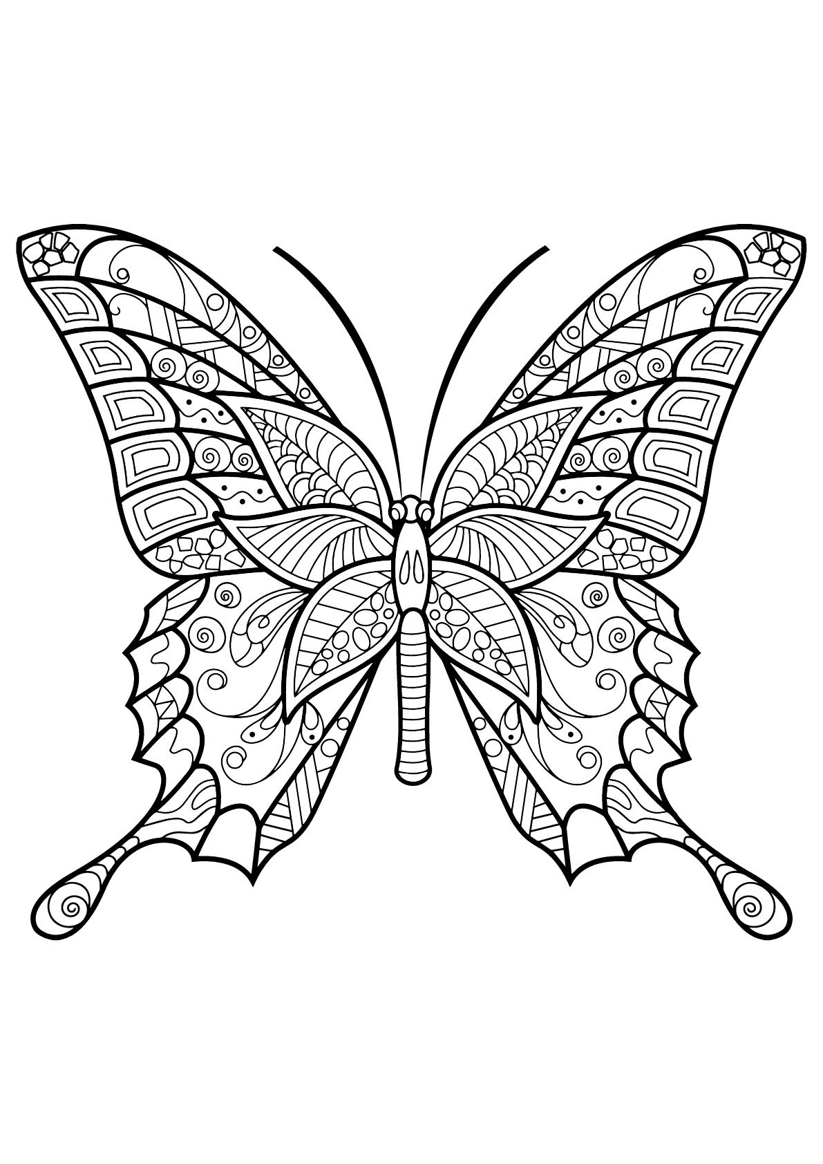 Pin By Andrea Godwin On I Can Make That Insect Coloring Pages Butterfly Coloring Page Butterfly Printable