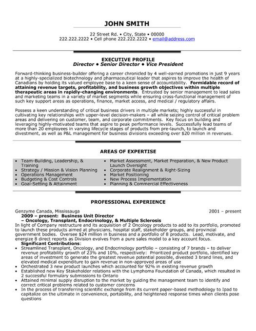 Click Here To Download This Business Unit Director Resume Template
