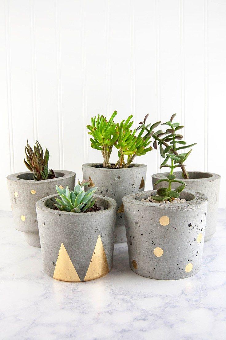 Make Concrete And Gold Diy Plant Pots Concrete Plant Pots Gold