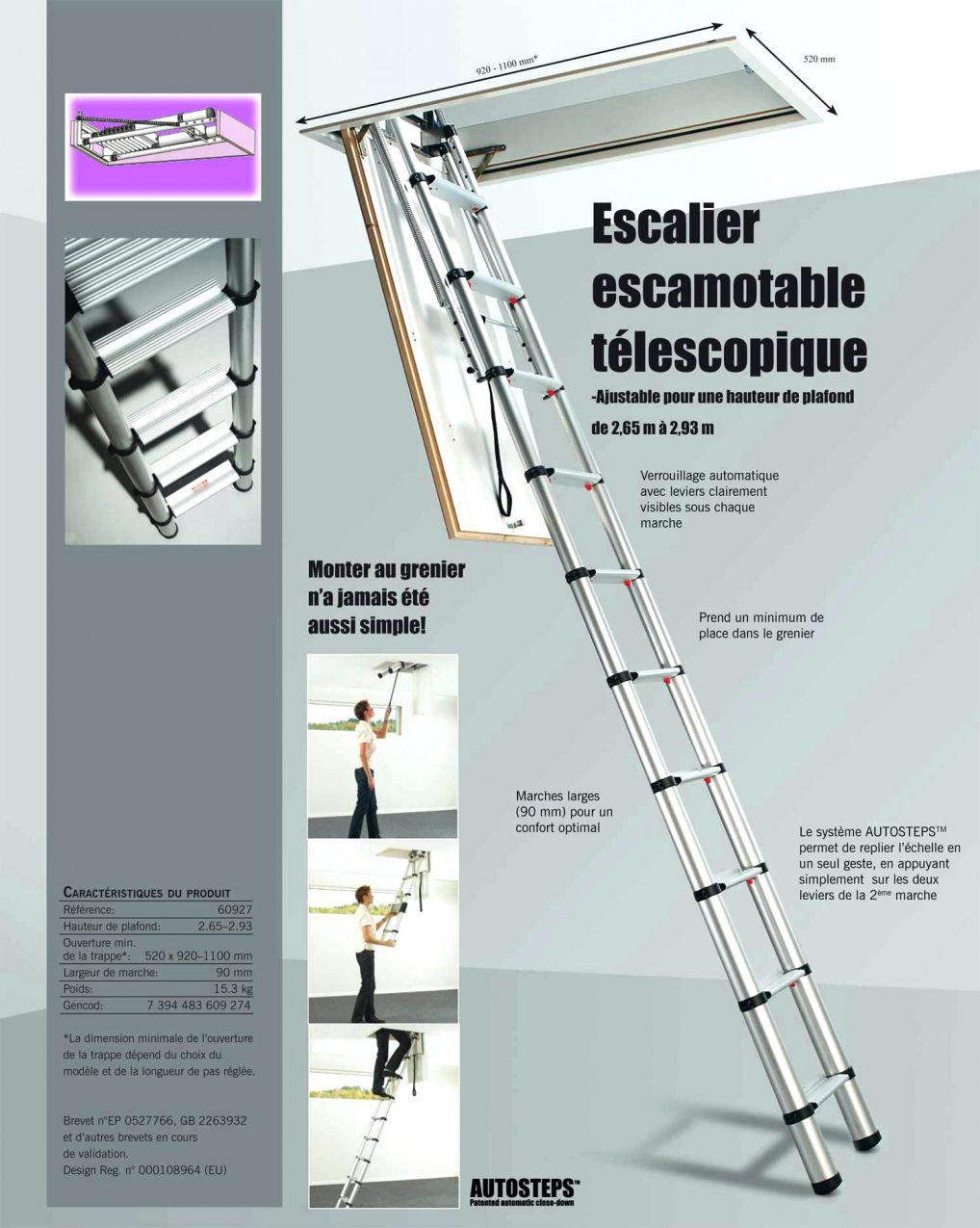 50 Echelle De Meunier Brico Depot 2018 Echelle De Grenier Echelle Telescopique Echelle