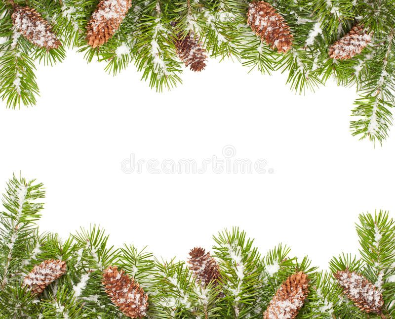 Christmas Border Christmas Tree Branches And Fir Cones Border Covered In Snow Ad Tree Branches Christma Christmas Tree Branches Christmas Border Tree