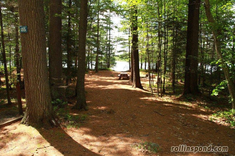 eighth lake campground new york | Lake, Campground, Tree