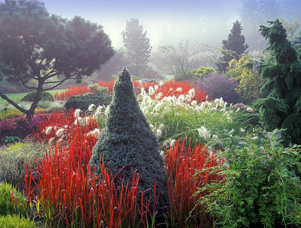 Gardens Of East Anglia England Self Guided Day Trip Garden Design Conifers Garden Amazing Gardens Garden Design