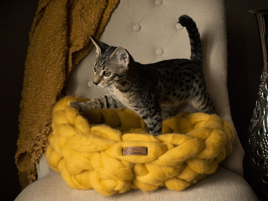 A1Savannahs Homemade Merino Wool Cat Beds…now available in