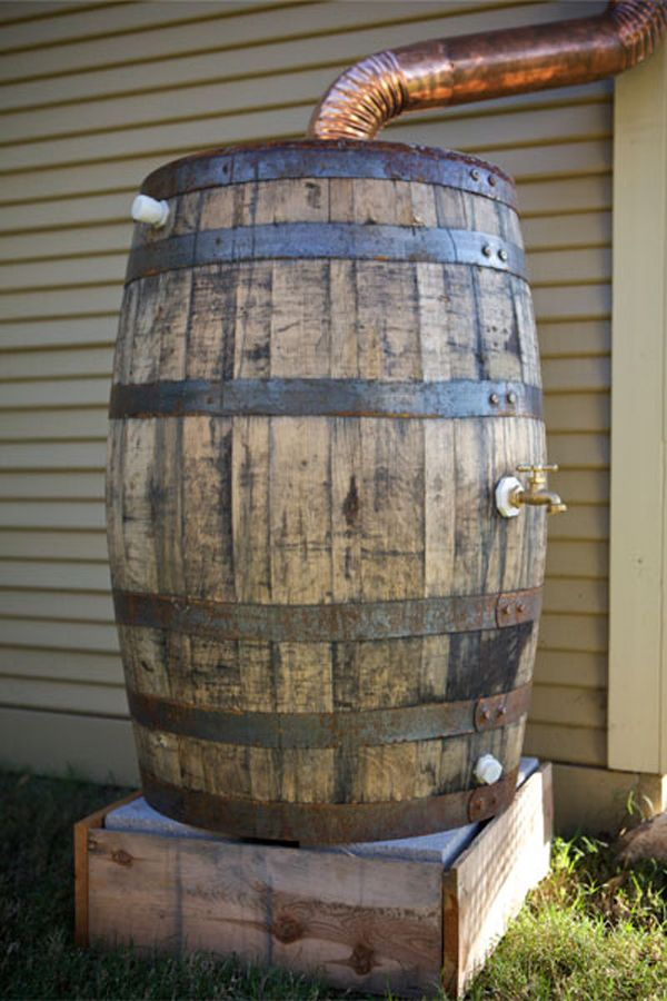 Rain Barrel Inside In 2019 Rain Barrel Wine Barrel
