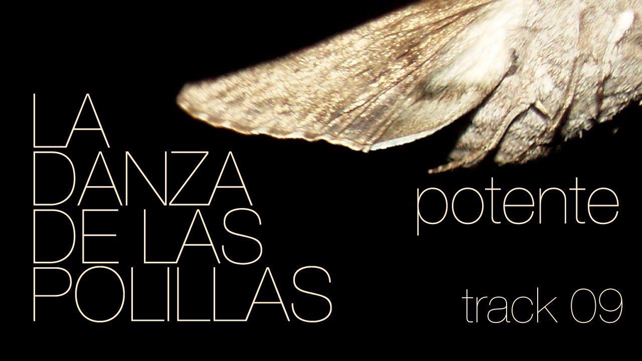 LA DANZA DE LAS POLILLAS - Potente (Audio & Letras)