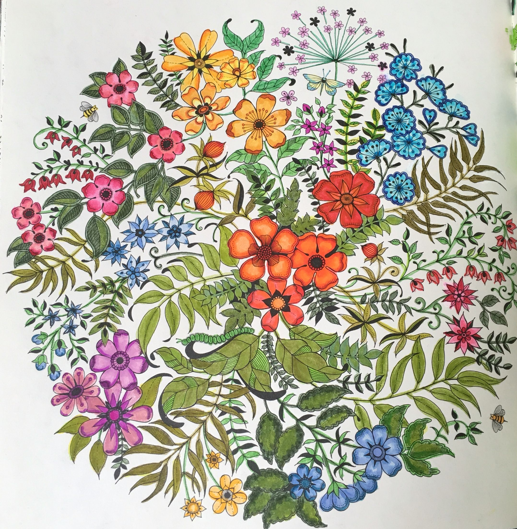 Secret Garden Coloring Book Tom Bow Markers Johanna Basford Coloring Secret Garden Coloring Book Finished Secret Garden Coloring Book