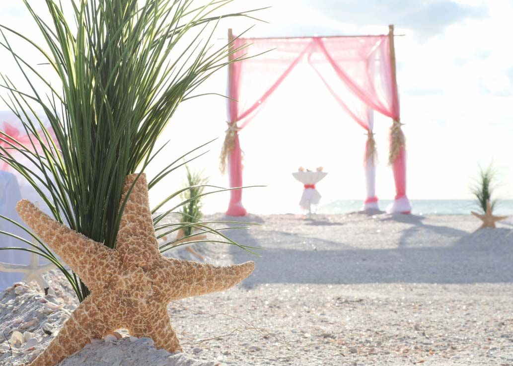 Starfish and grasses line the aisle