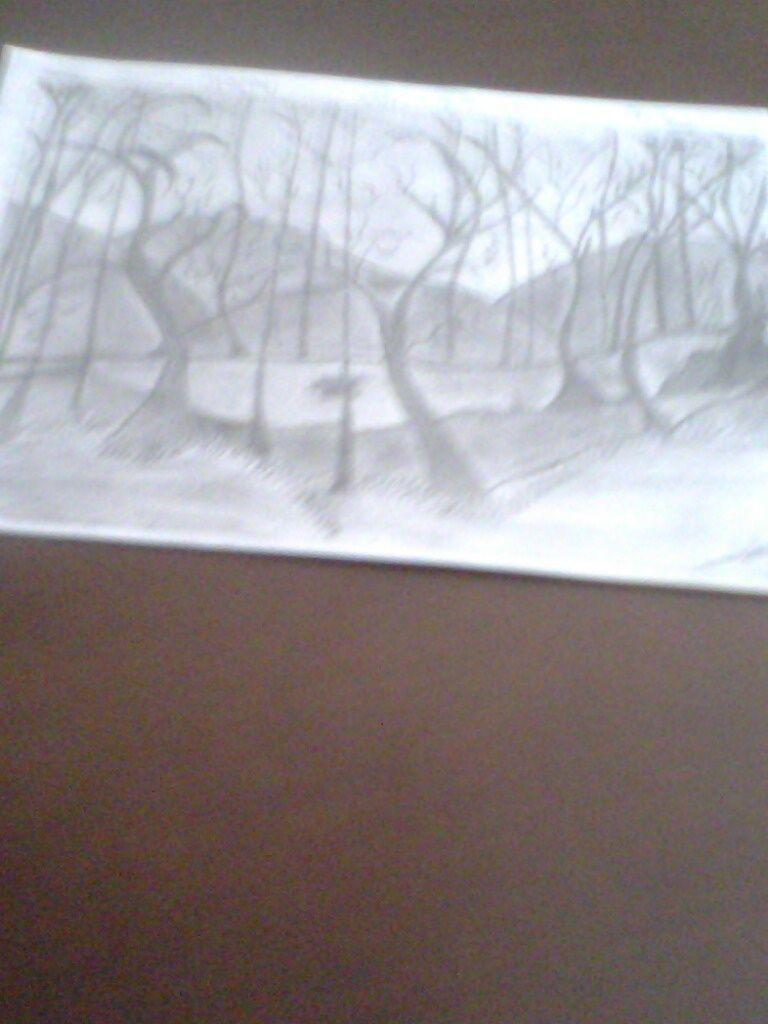 Dibuix amb llapis.