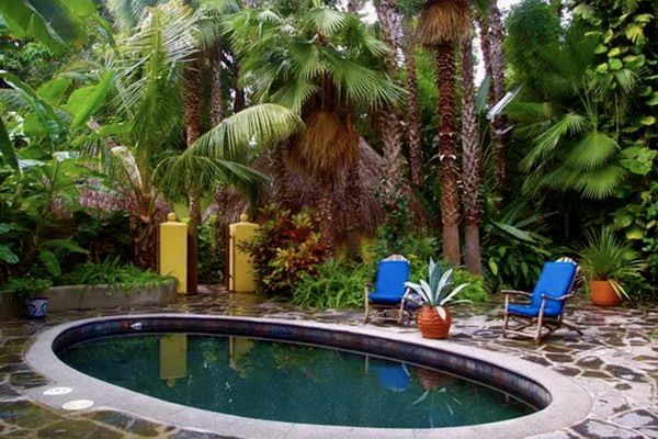 Small tropical backyard patio ideas google search for Landscaping ideas for pool areas