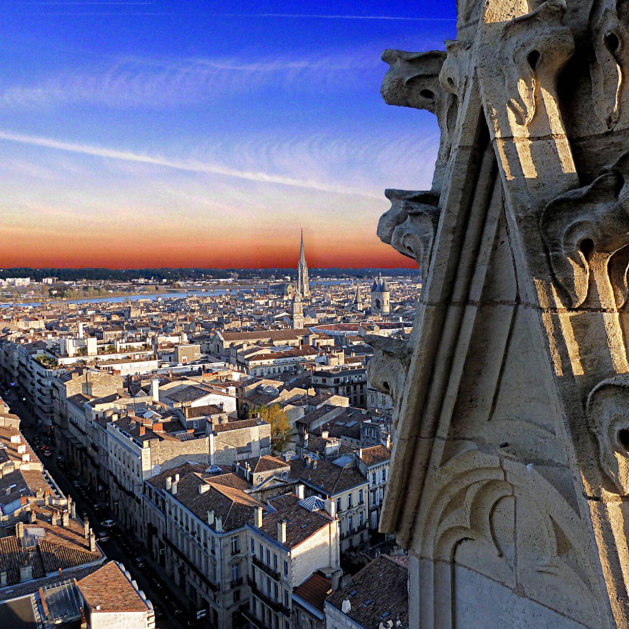 Bordeaux - kochać czy nienawidzić? - C'est la vie!