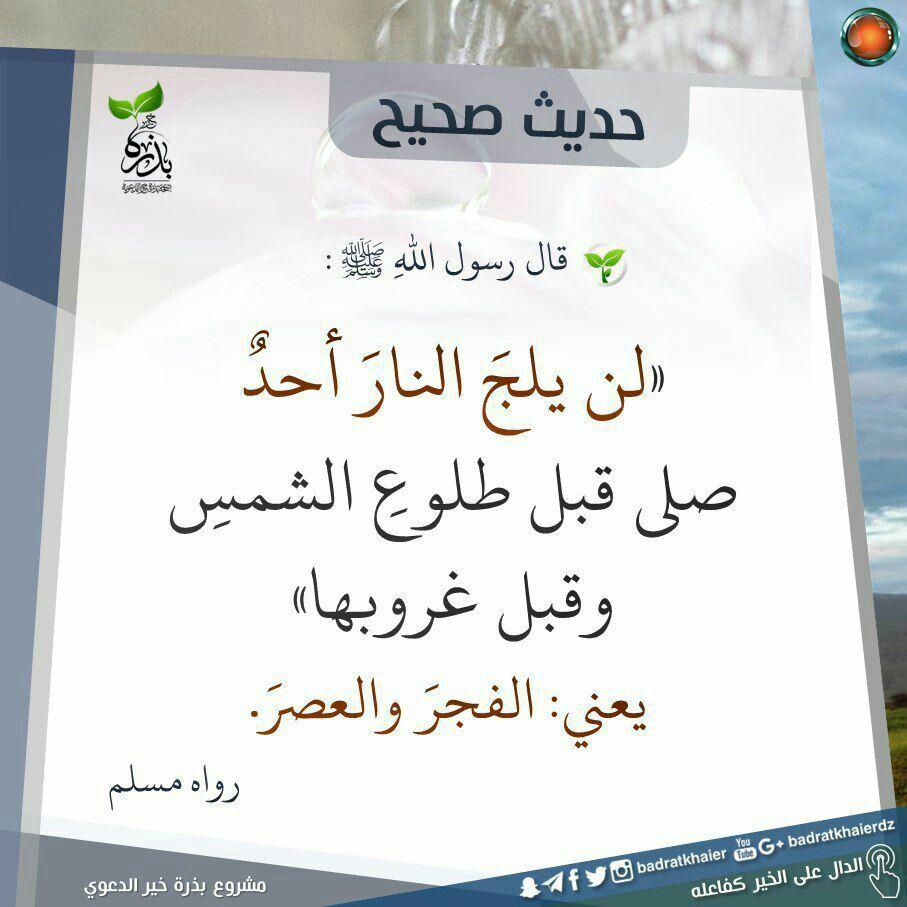 الأخلاق هي الروح التي لا تموت بعد الرحيل وما أجمل أن تسير بين الناس ويفوح منك عطر أخلاقك Words Quotes Quran Verses Islam Hadith