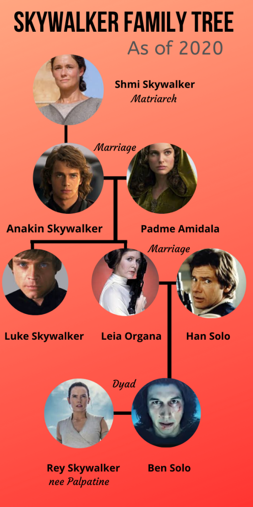 A Small Skywalker Family Tree post The Rise of Skywalker