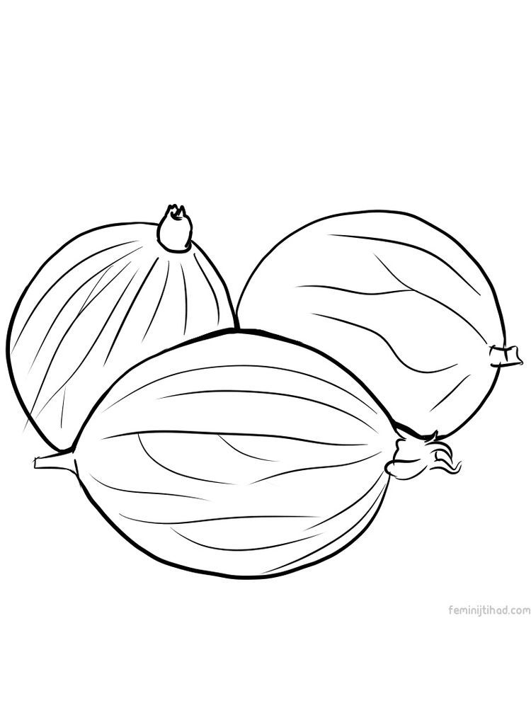Printable Gooseberry Coloring Pages