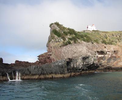 Taiaroa Heads, rock formations reveal the volcanic origins of Otago Peninsula