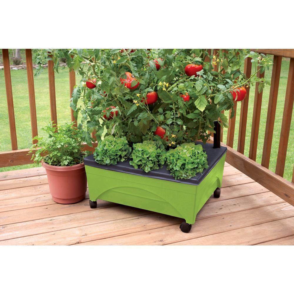 Pin On Raised Garden Bed Kits
