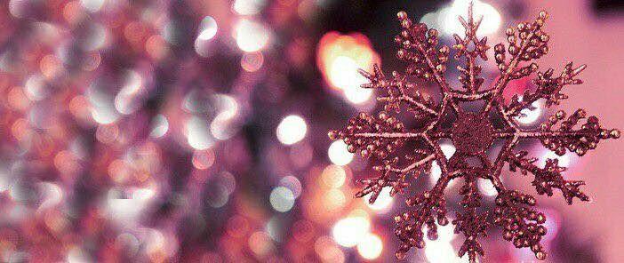 LuLaRoe Seasonal