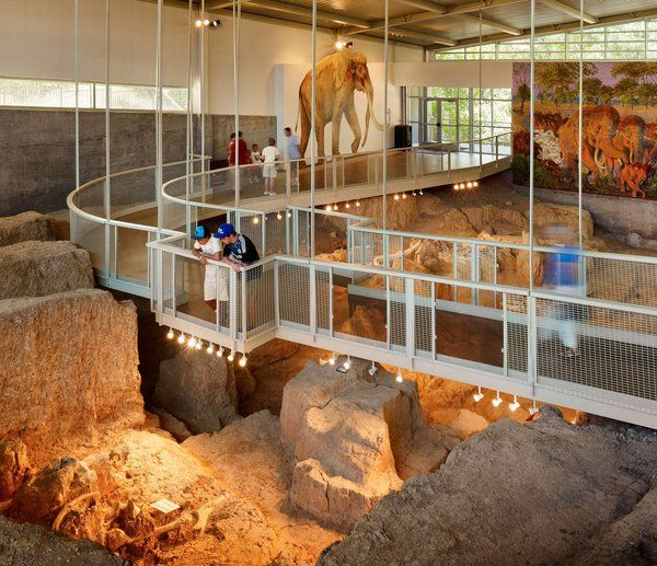 What Killed The Mammoths Of Waco?